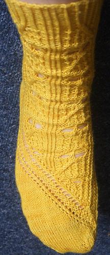 Yellow_toe_blue_bg_medium