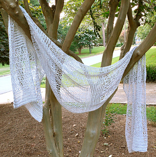 Wrap_in_tree_small2