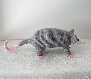 Opossum5_small2