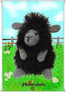 Rav_sheep_small2