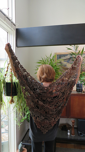 Shawl_-_tescellating_pinecone_65x38_-_113013_medium