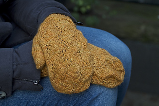 Harvest_gold_mittens_detail__800x533__small2