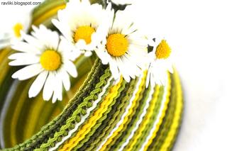 Bosnian_herbal_daisy_small2