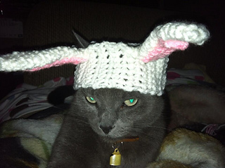 Bunny_hat_1_small2