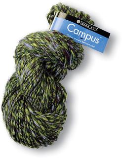 Campus_lg_small2