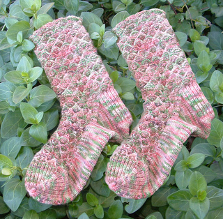 Garden_trellis_sock_small2
