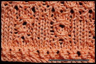 Mandarine_border_close-up_small2