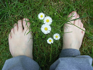 Barefoot_small2