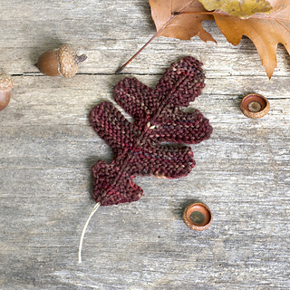 Knitting Pattern Oak Leaf : Ravelry: Oak Leaves pattern by Elizabeth Murphy