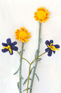 Daisies-flax_small2