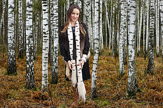 Forest_of_birch_trees2_small2