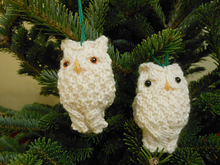Oison_owls_005_small2