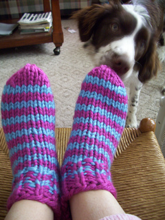 Striped_bulky_slipper_socks_with_scout_small2