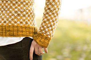 Rhinebeck_sweater-81_small2