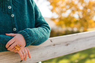 Rhinebeck_sweater-86_small2