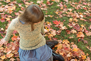 Rhinebeck_sweater-104_small2