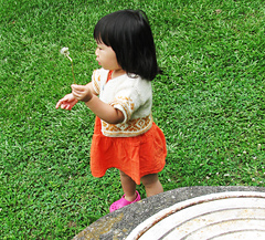 Img_3729_copy_small
