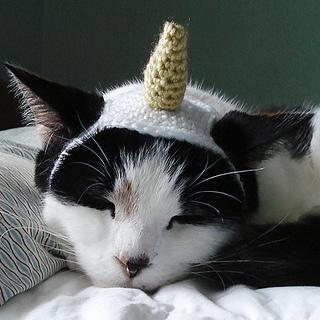 Ravelry  Unicorn Costume Pet Cat Dog Hat Headband pattern by Lindsay Smith a5f2da3c633