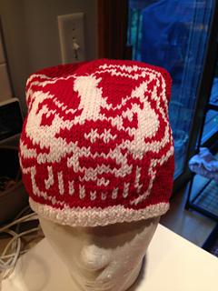26d1868987f Ravelry  University of Wisconsin Beanie Kit pattern by Melanie Cross