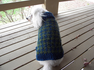 Voguedogsweater2_small2