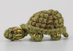 Turtle_2_small_best_fit