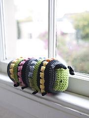 Limonia_caterpillar_lg_small