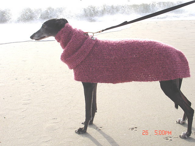 Ravelry Quick Easy Greyhound Dog Sweater Pattern By Lenora Conlon