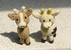 Cow_01-01_small_best_fit