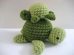 Sea_turtle_2_small