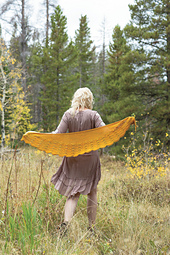 Arnica-shawl_small_best_fit