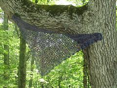 Malabrigo_triangle_tree_small