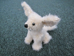 Mini_fennec_fox_quarter_small