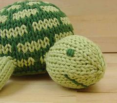 Turtle_2_edited-1_small