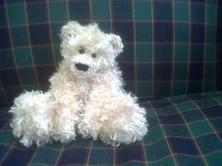 Pocket_bears_004_small2