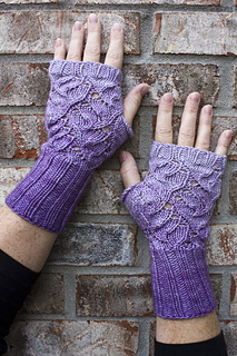Buddleia_mitts_close_up_small2