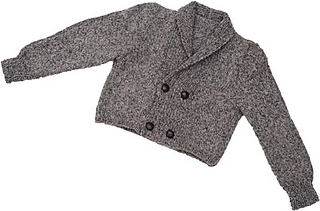 Wise_owl_coat_small2