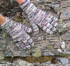 500_gloves_isle_of_skye13may2016_small