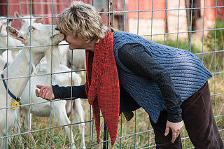Goat_kisses__turtle_denim-55_small2