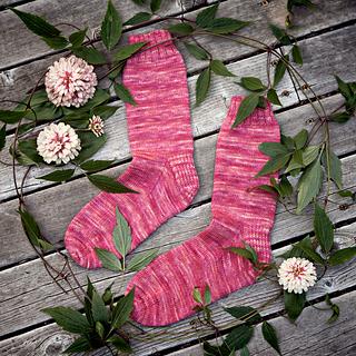 Fuschia-socks-2303-1200_small2