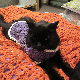 Ravelry Kitty Cat Or Small Dog Crochet Sweater Pattern By Starling