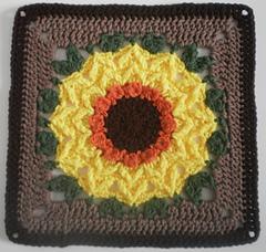 Sunflower_4_small