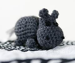 Nilpferd1_small
