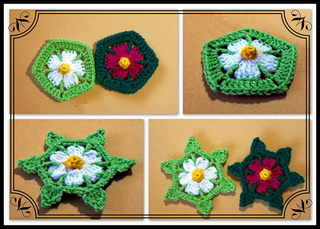 Daisy-hexagon-_-star-framed_small2