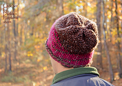Bentley-men-women-crochet-hat-pattern-by-darleen-hopkins-back-view-weblogo_small