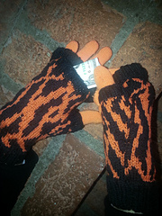 Tiger_mitt_small