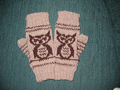Superb_owl_mitts_small