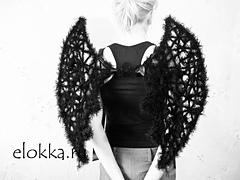 Elokka_chernye_kryljya_1_small