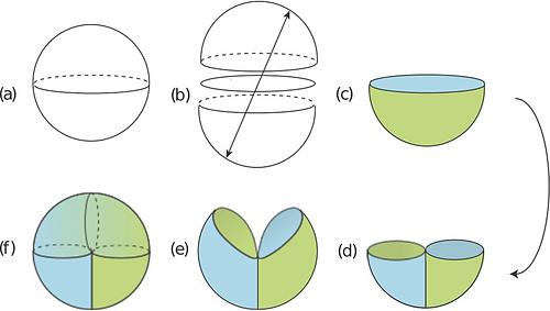 Emilydiagram3_medium