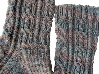 Algernon-2008-08-19a-blank_small2