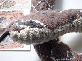 Stanascrittersetc_rattlesnake_004_small2